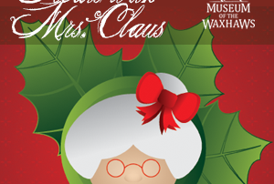 post-picblog-snacks-mrs-claus